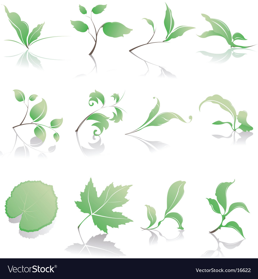 Plant design elements vector | Price: 3 Credit (USD $3)