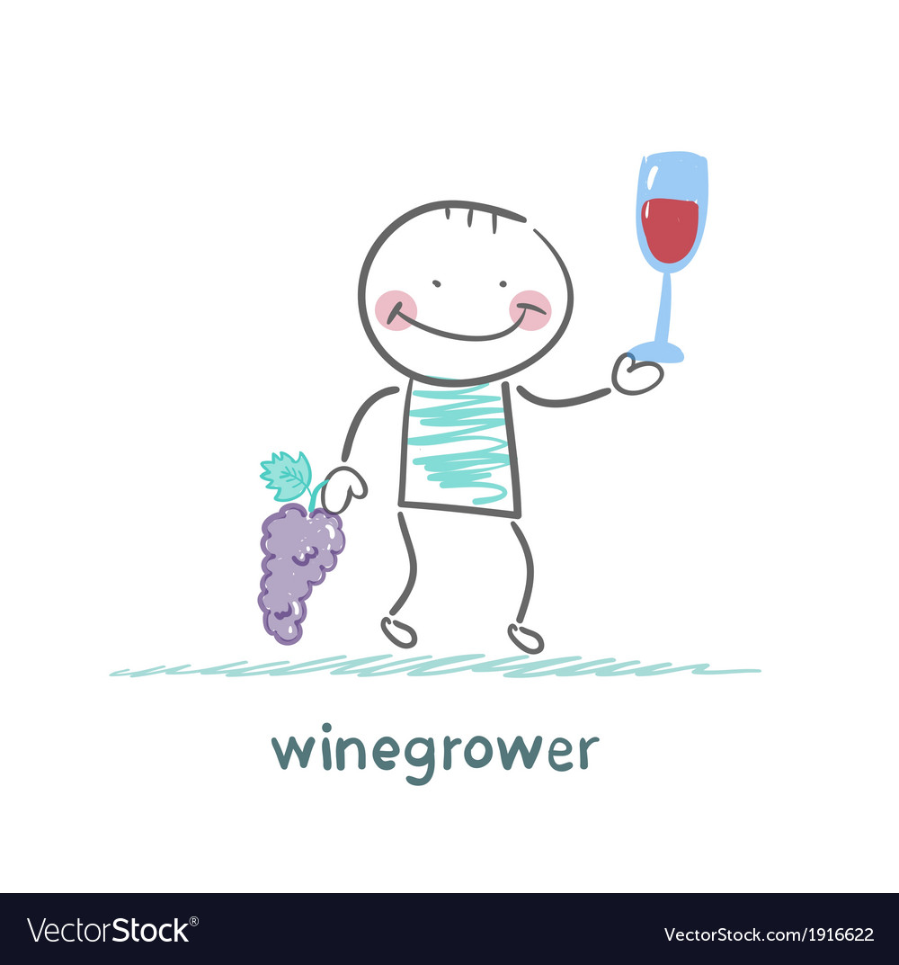 Winegrower holds a bunch of grapes and looks at a vector | Price: 1 Credit (USD $1)
