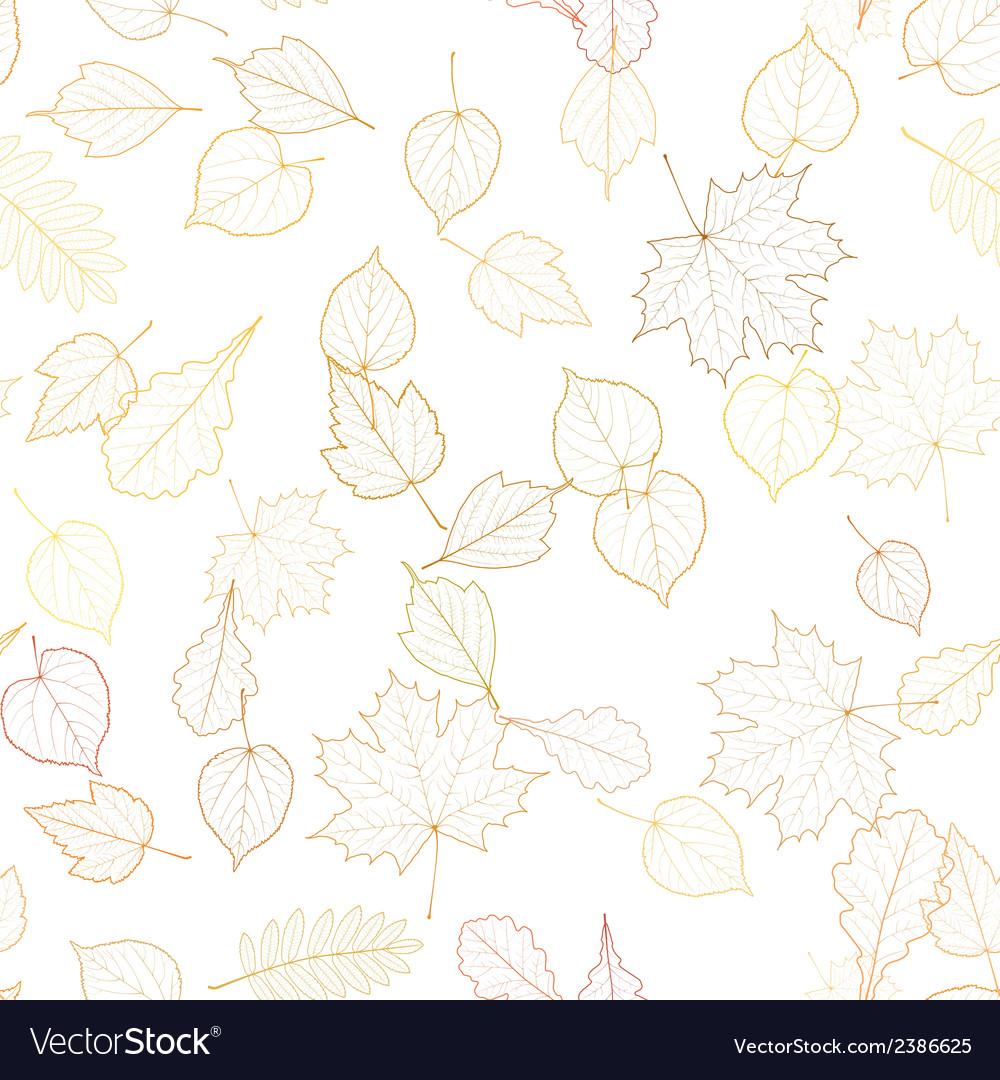 Autumn leaf skeletons template vector | Price: 1 Credit (USD $1)