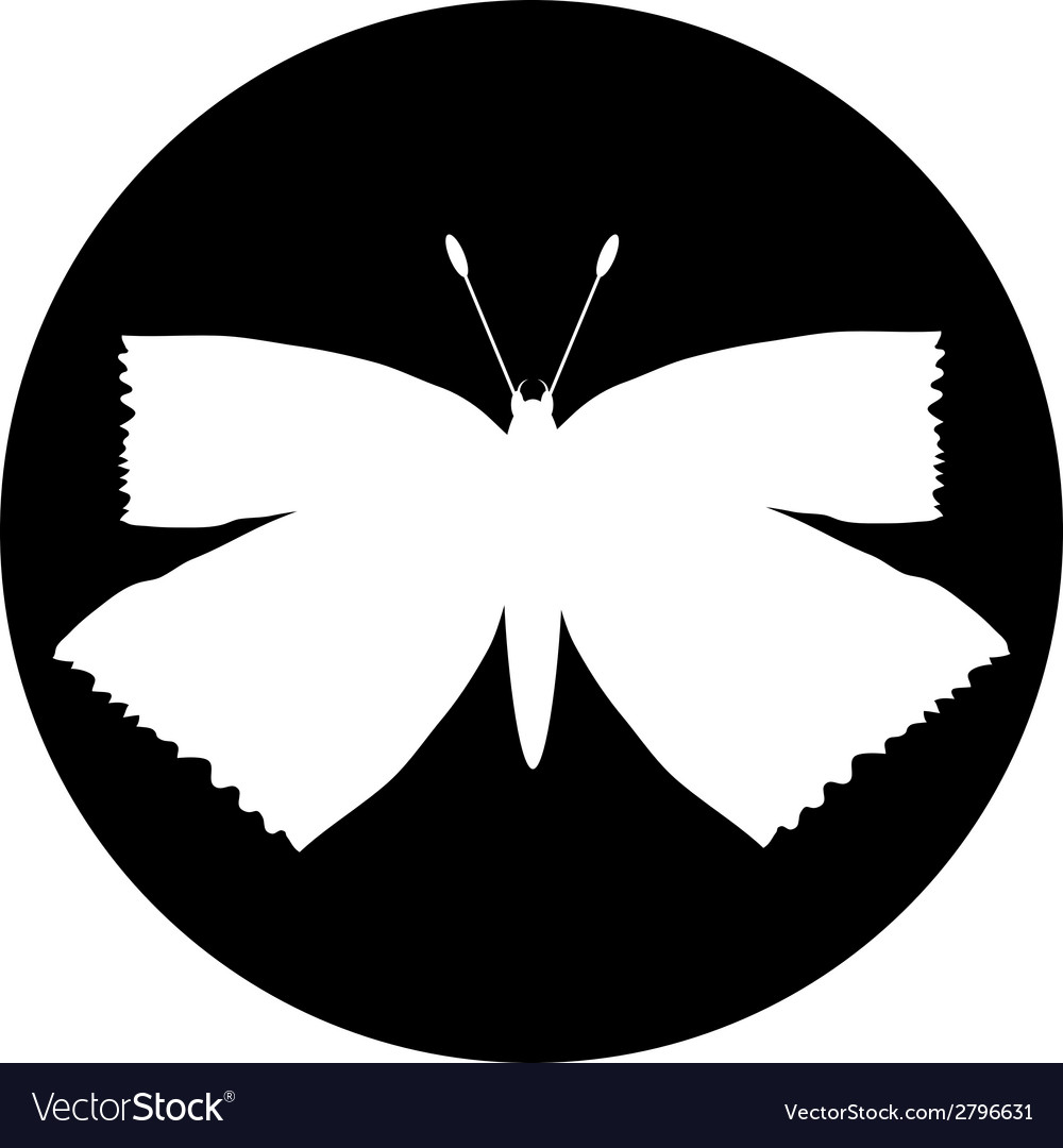 Butterfly button vector | Price: 1 Credit (USD $1)