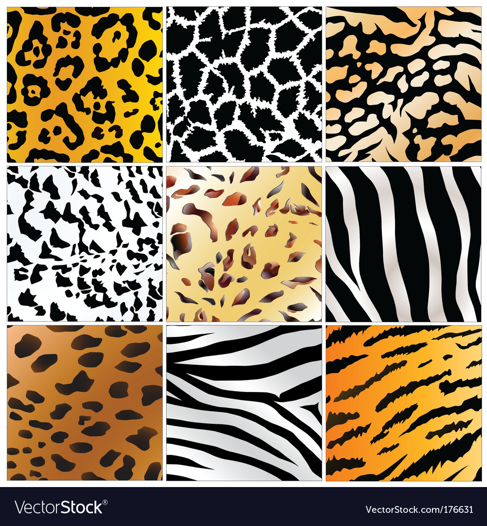 Wild patterns vector | Price: 1 Credit (USD $1)