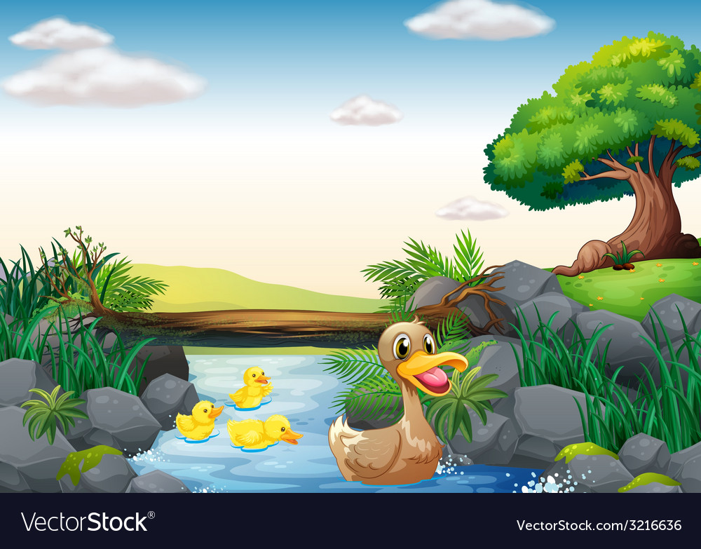 Ducks and river vector   Price: 3 Credit (USD $3)