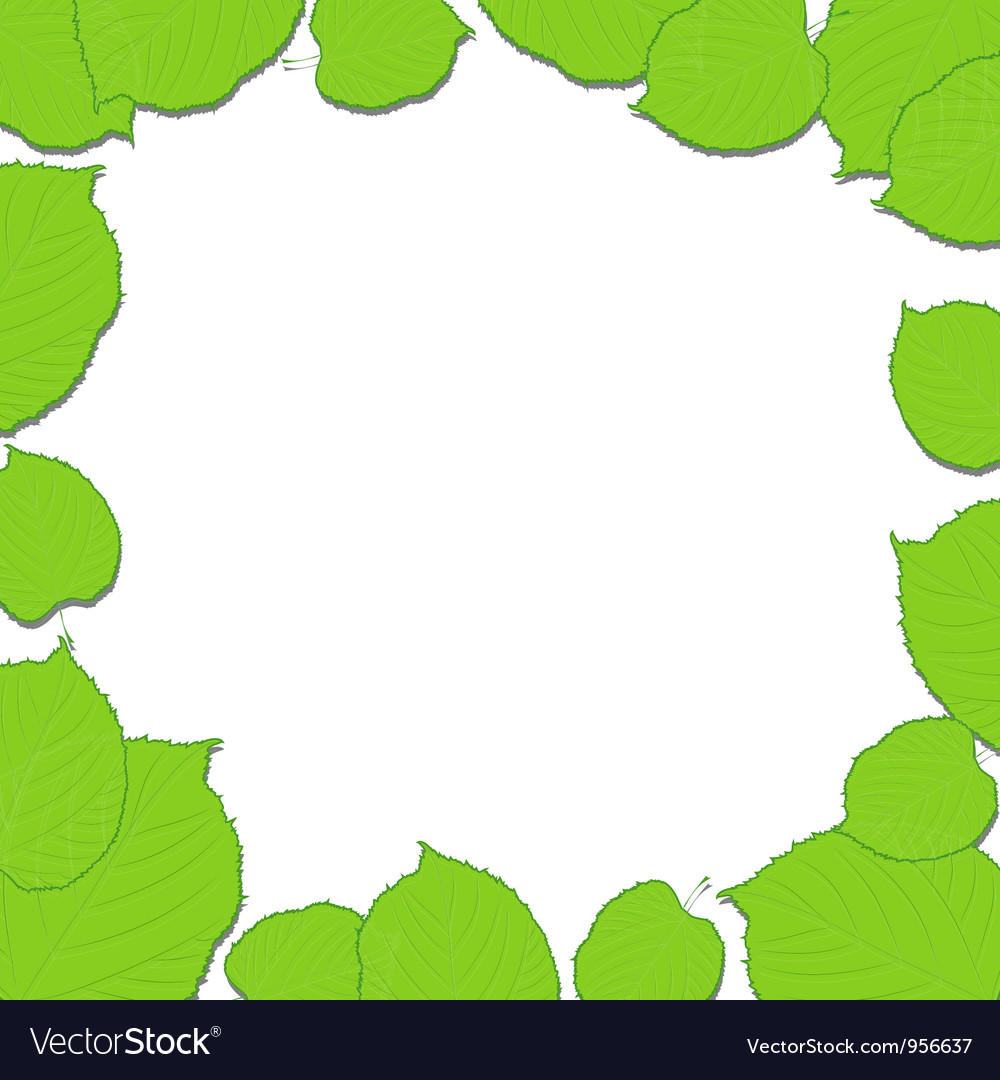 Green leaves frame on the white dropping shadow vector | Price: 1 Credit (USD $1)
