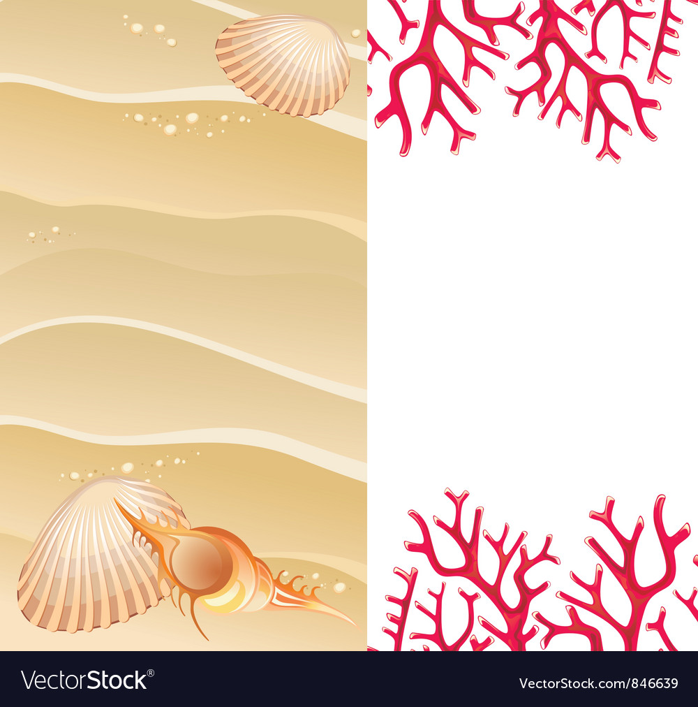 Summer background with seashells vector | Price: 1 Credit (USD $1)