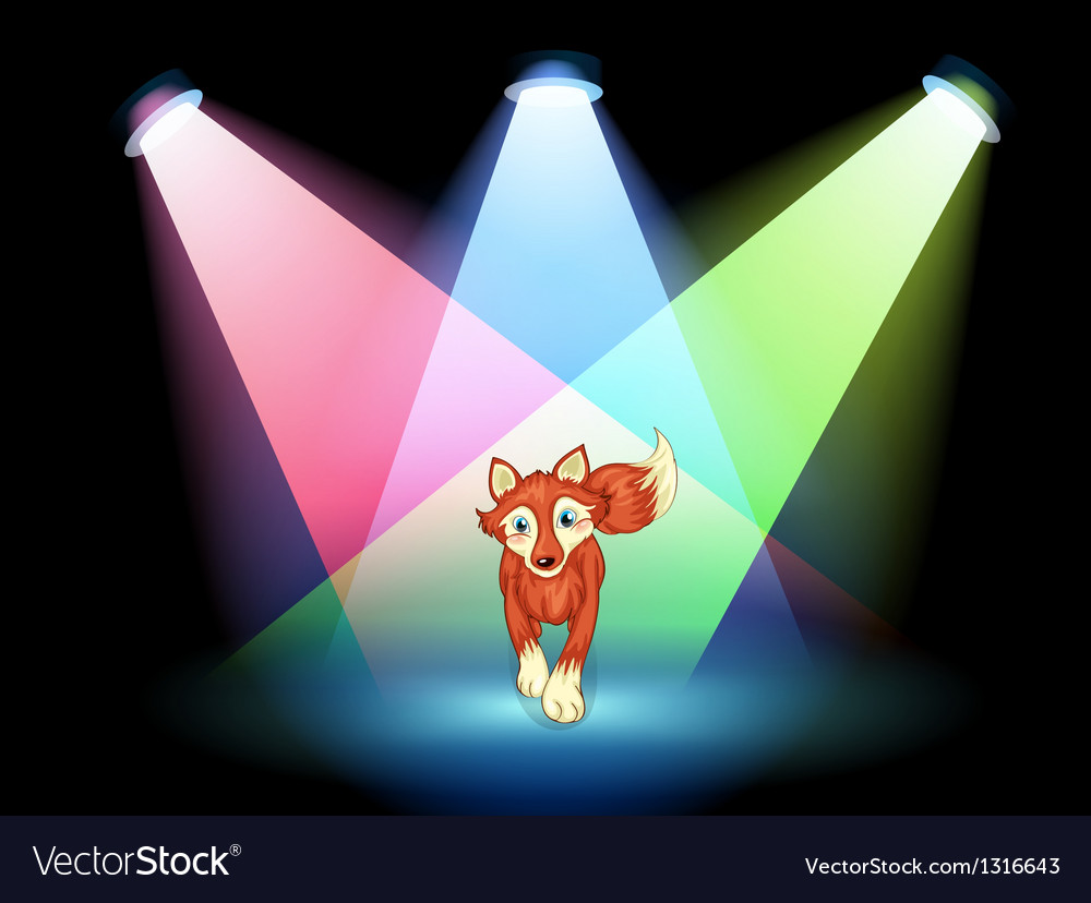 A fox at the stage with spotlights vector | Price: 1 Credit (USD $1)
