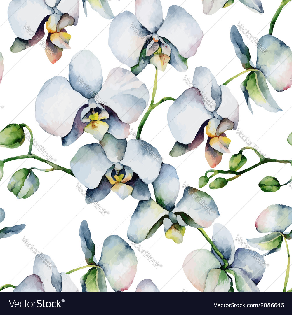 Floral pattern seamless background white orchids vector | Price: 1 Credit (USD $1)