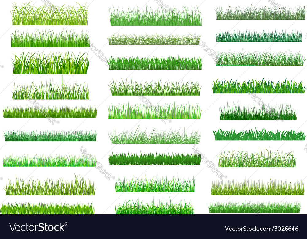 Fresh green spring grass borders vector | Price: 1 Credit (USD $1)