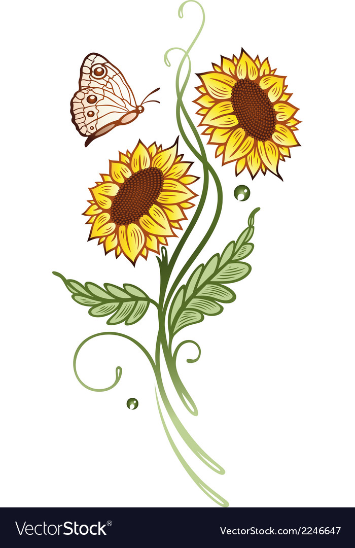Sun flowers summer time vector | Price: 1 Credit (USD $1)