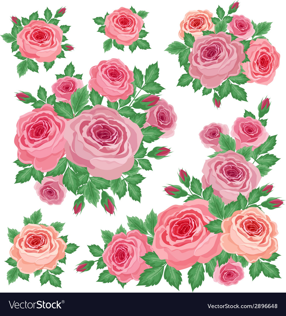 Bouquets of roses vector | Price: 1 Credit (USD $1)