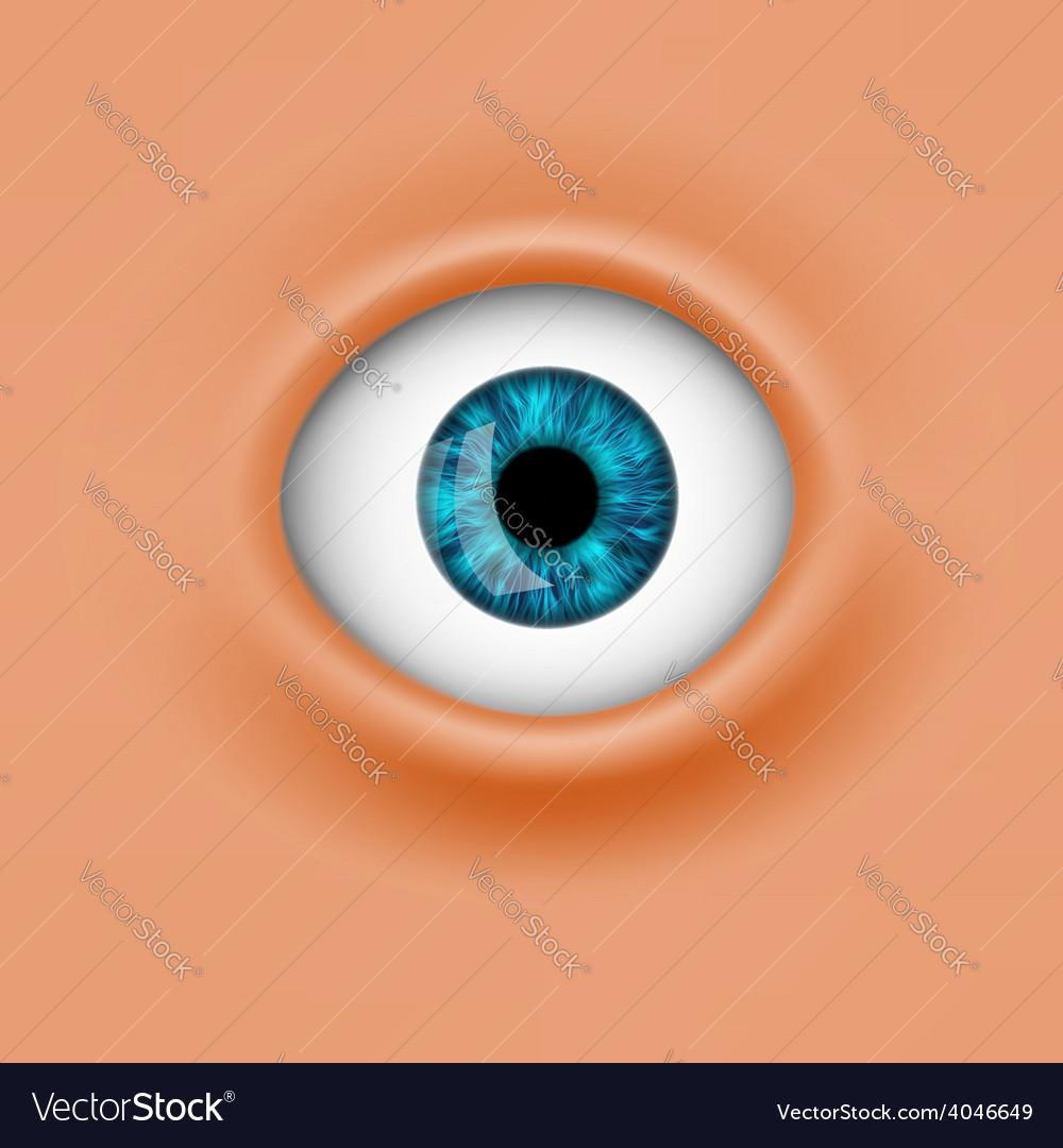 Human eye vector   Price: 1 Credit (USD $1)