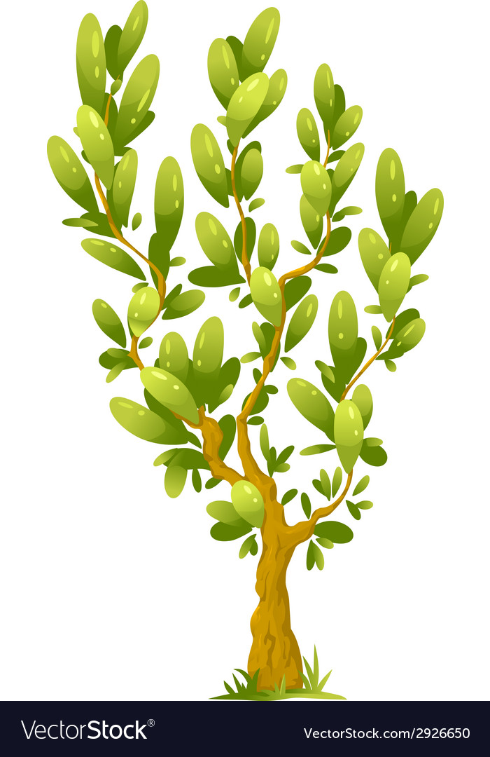 Cartoon tree with elliptical leaves vector | Price: 1 Credit (USD $1)