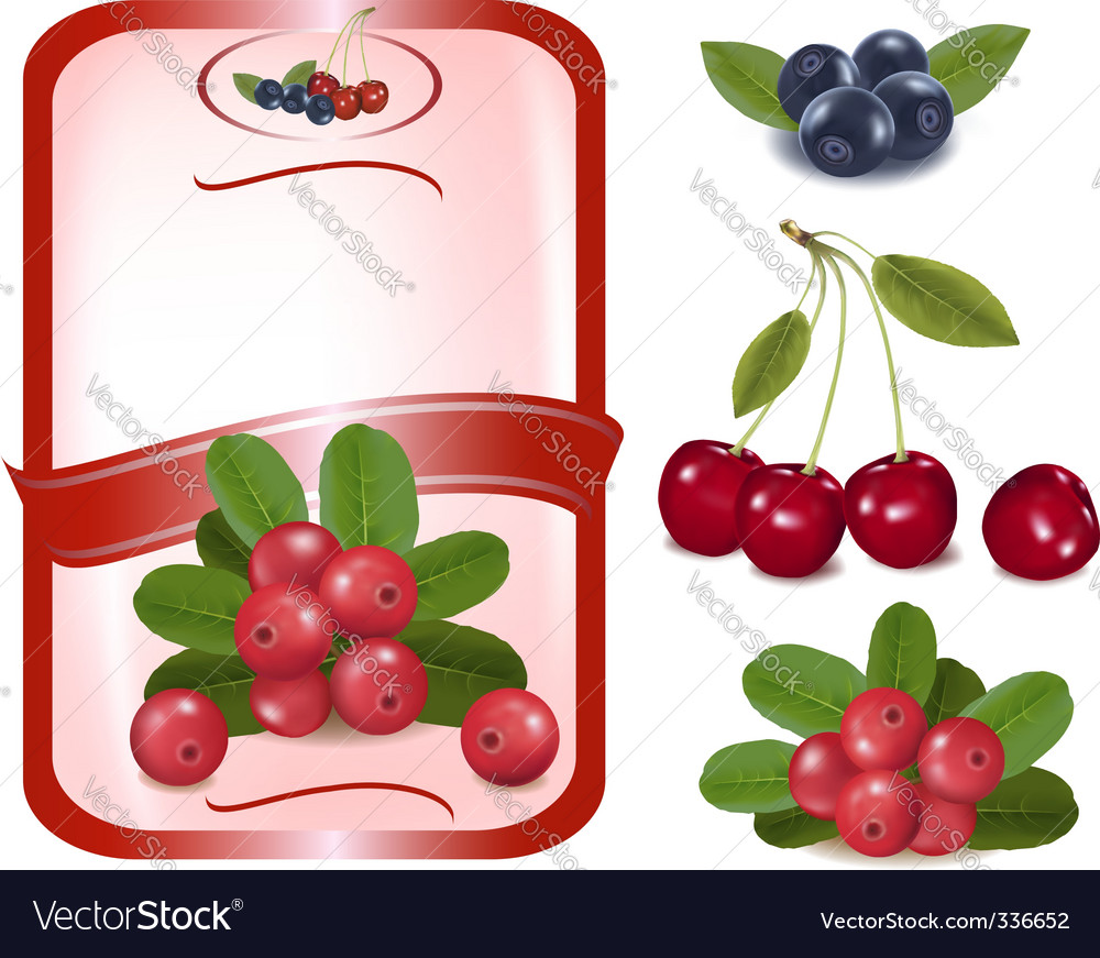 Label with cranberries vector | Price: 1 Credit (USD $1)