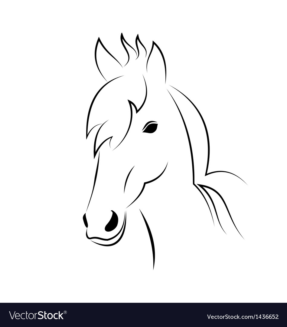 Symbol sketch outline head horse vector | Price: 1 Credit (USD $1)