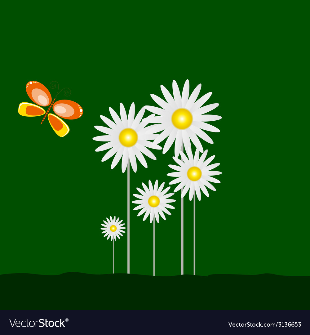 Daisy and beauty butterfly with green background vector | Price: 1 Credit (USD $1)