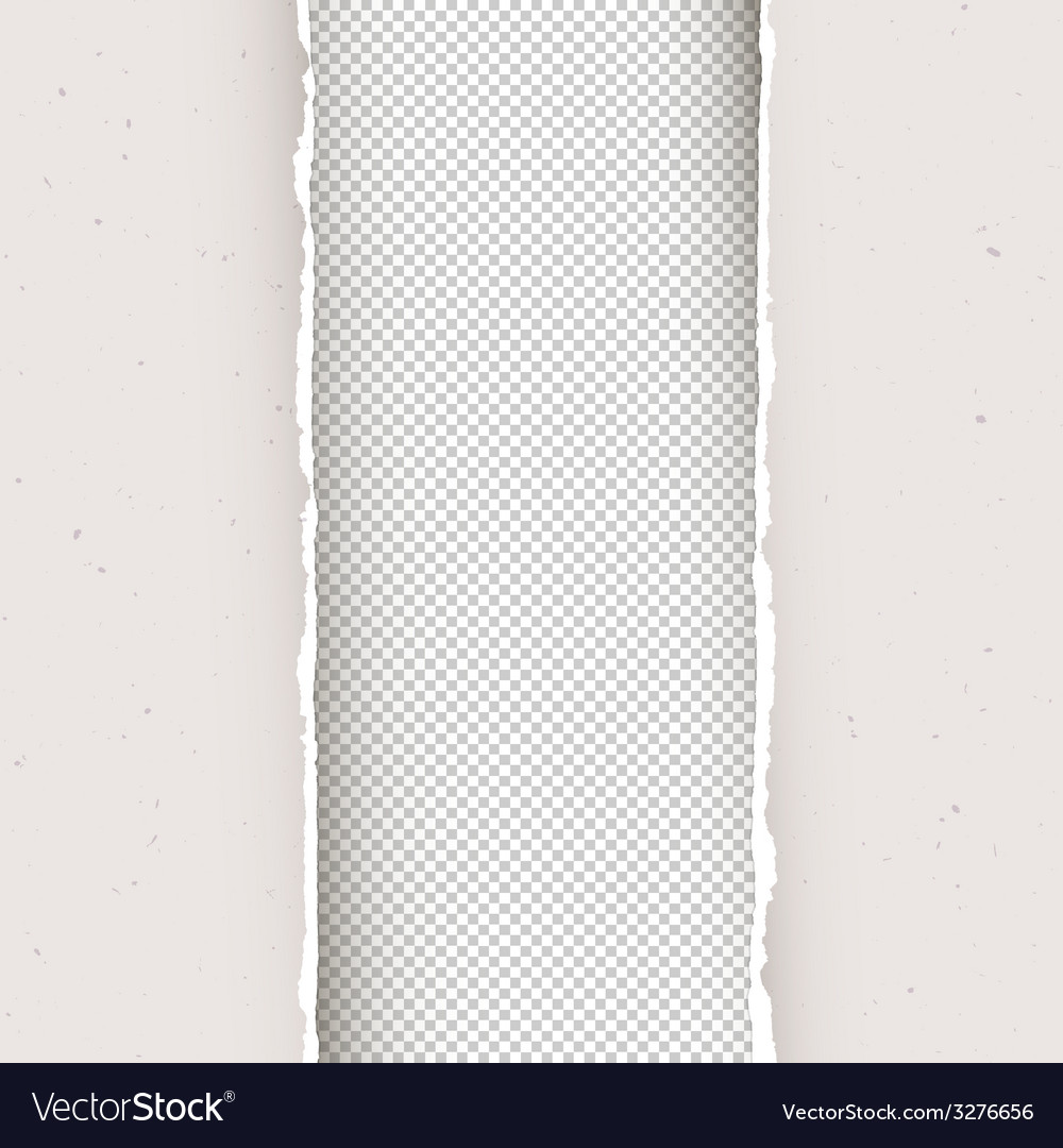 Torn papers copyspace transparent vector | Price: 1 Credit (USD $1)