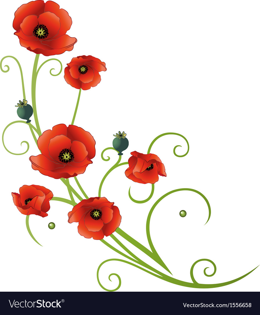 Flowers tendril poppies vector | Price: 1 Credit (USD $1)