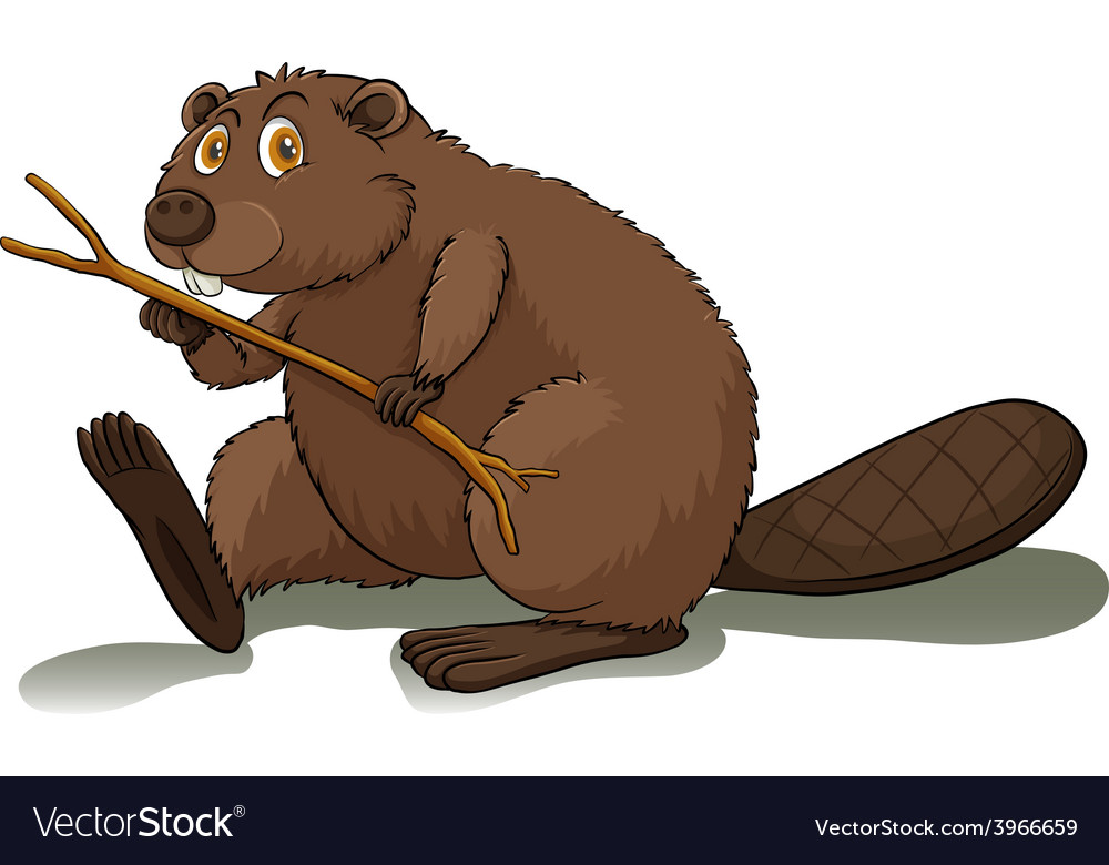 An eager beaver vector | Price: 1 Credit (USD $1)