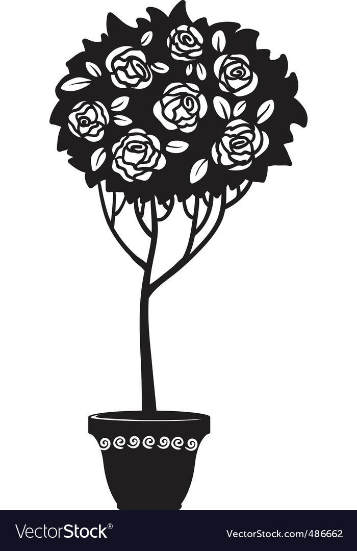 Rosebush vector | Price: 1 Credit (USD $1)