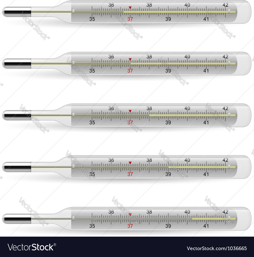 Mercury thermometer vector | Price: 1 Credit (USD $1)