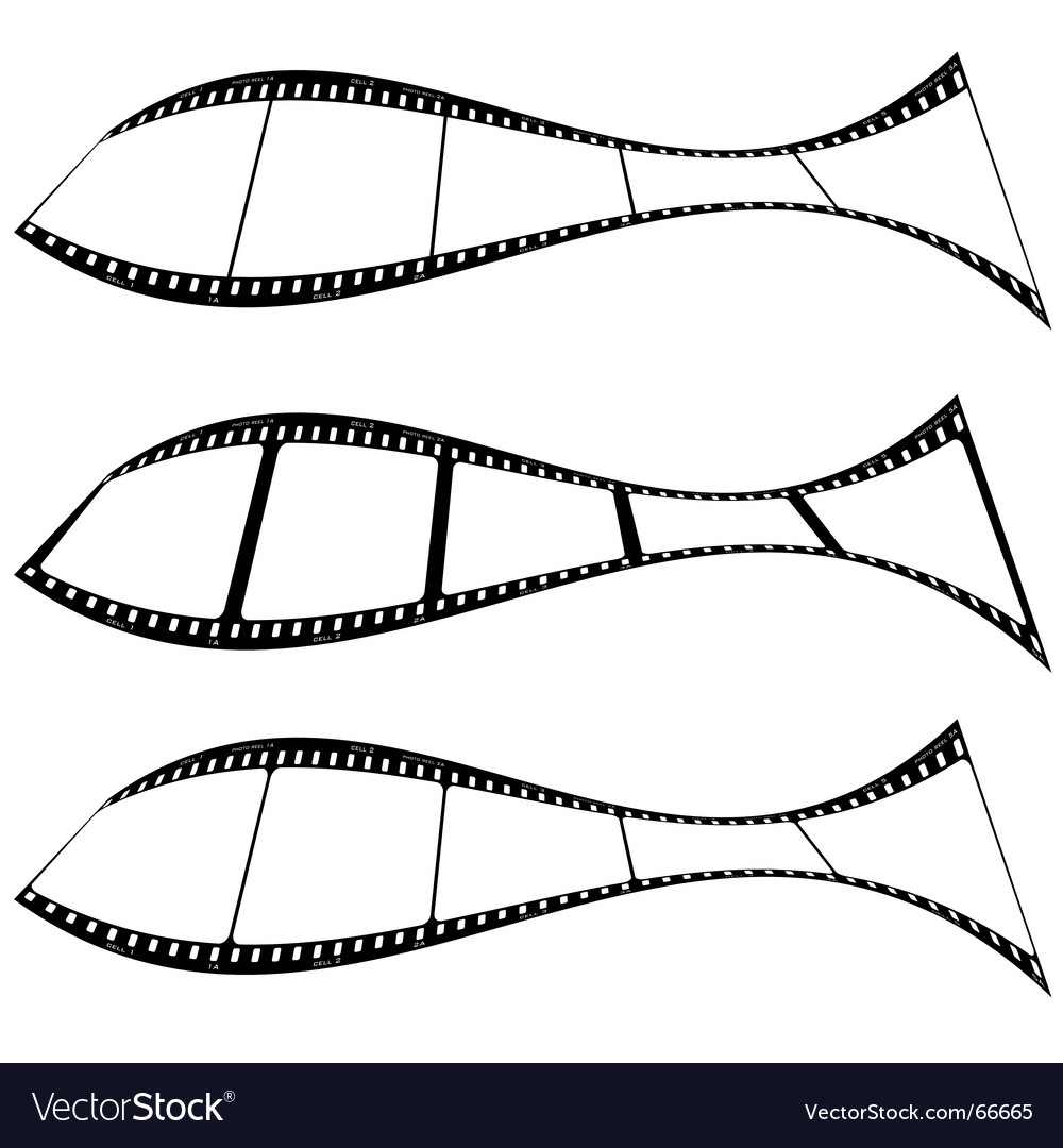 Photo film strip fish vector | Price: 1 Credit (USD $1)