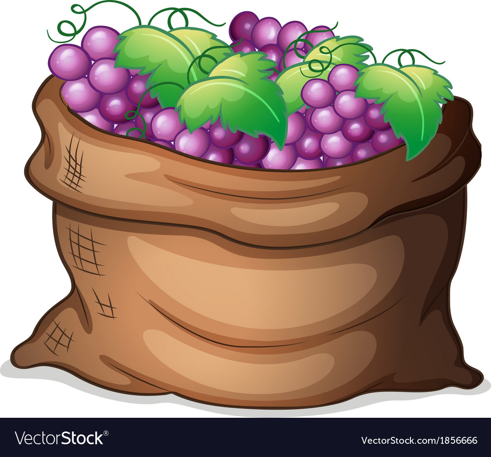 A sack of grapes vector | Price: 1 Credit (USD $1)