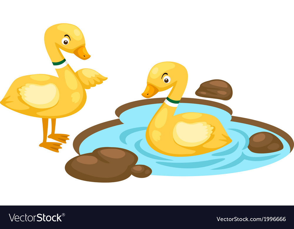 Duck family vector | Price: 1 Credit (USD $1)