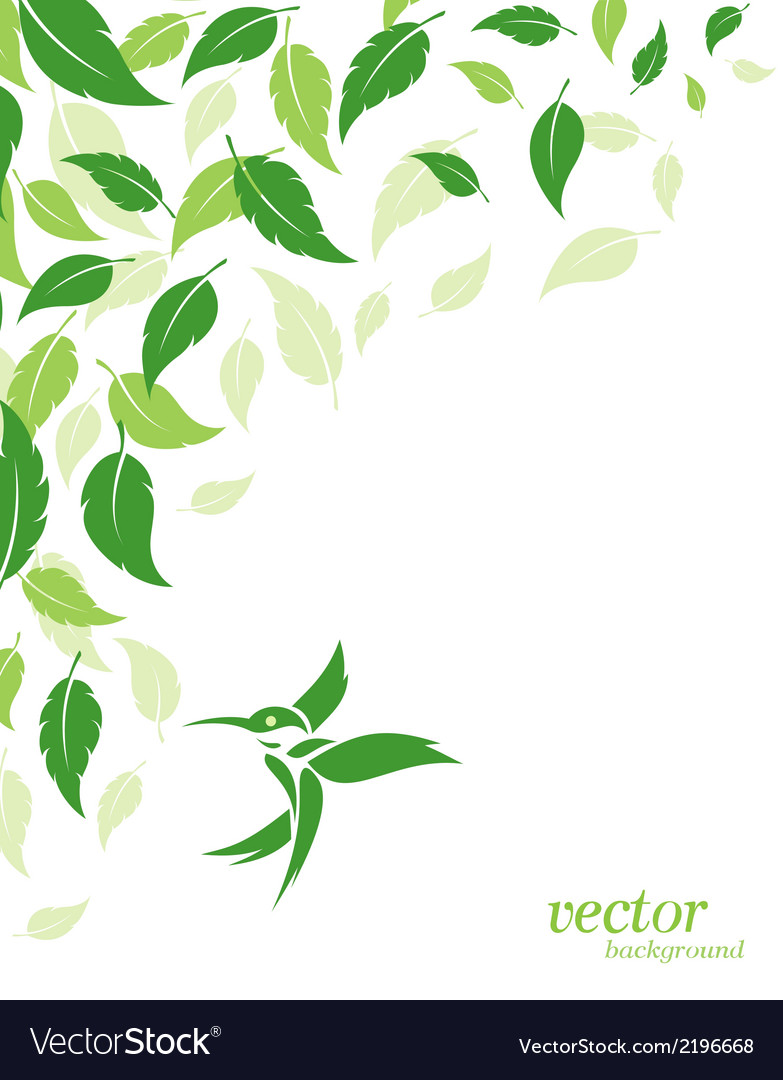 Abstract green leaves and hummingbirds background vector | Price: 1 Credit (USD $1)