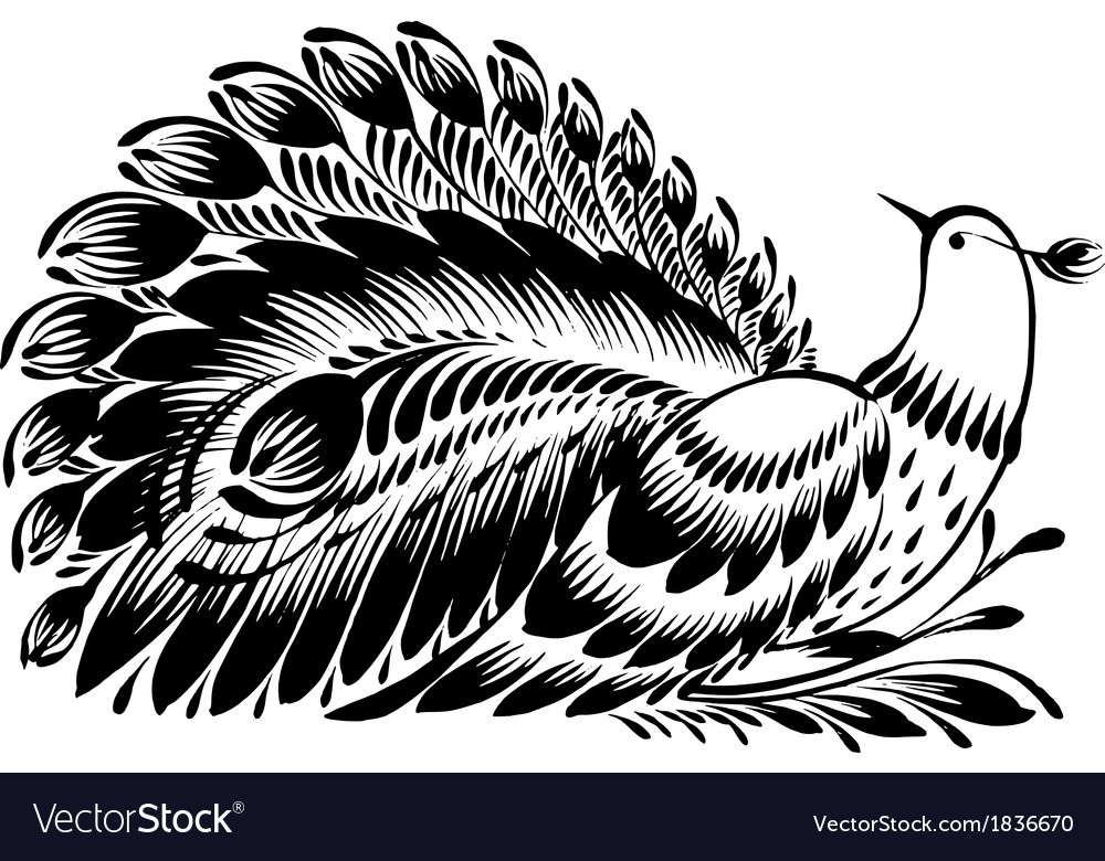 Decorative silhouette of a peacock vector | Price: 1 Credit (USD $1)