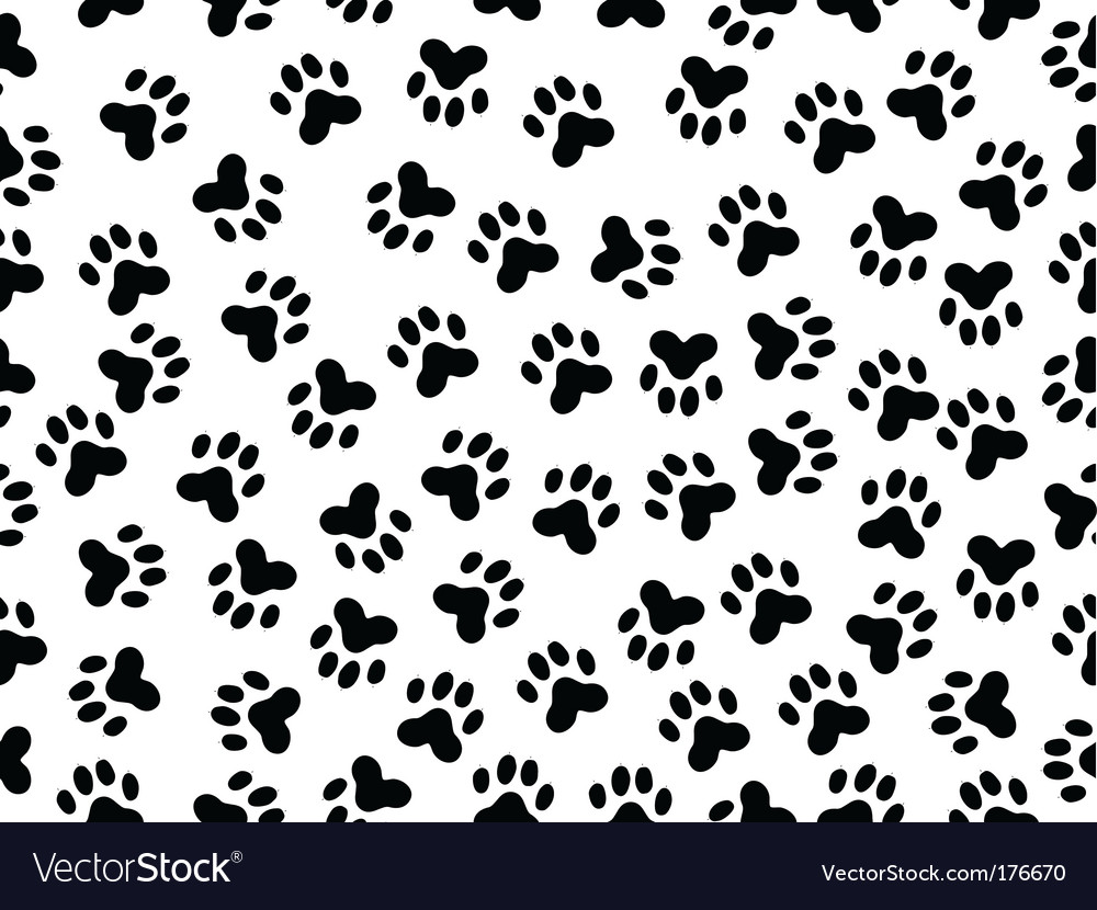 Wildcat foils vector | Price: 1 Credit (USD $1)