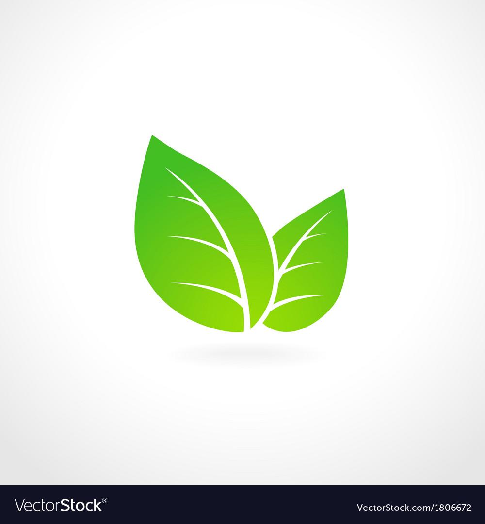 Green leaf ecology emblem vector | Price: 1 Credit (USD $1)