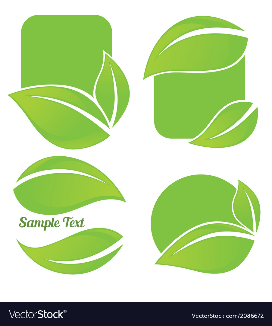 Leaf frames vector | Price: 1 Credit (USD $1)