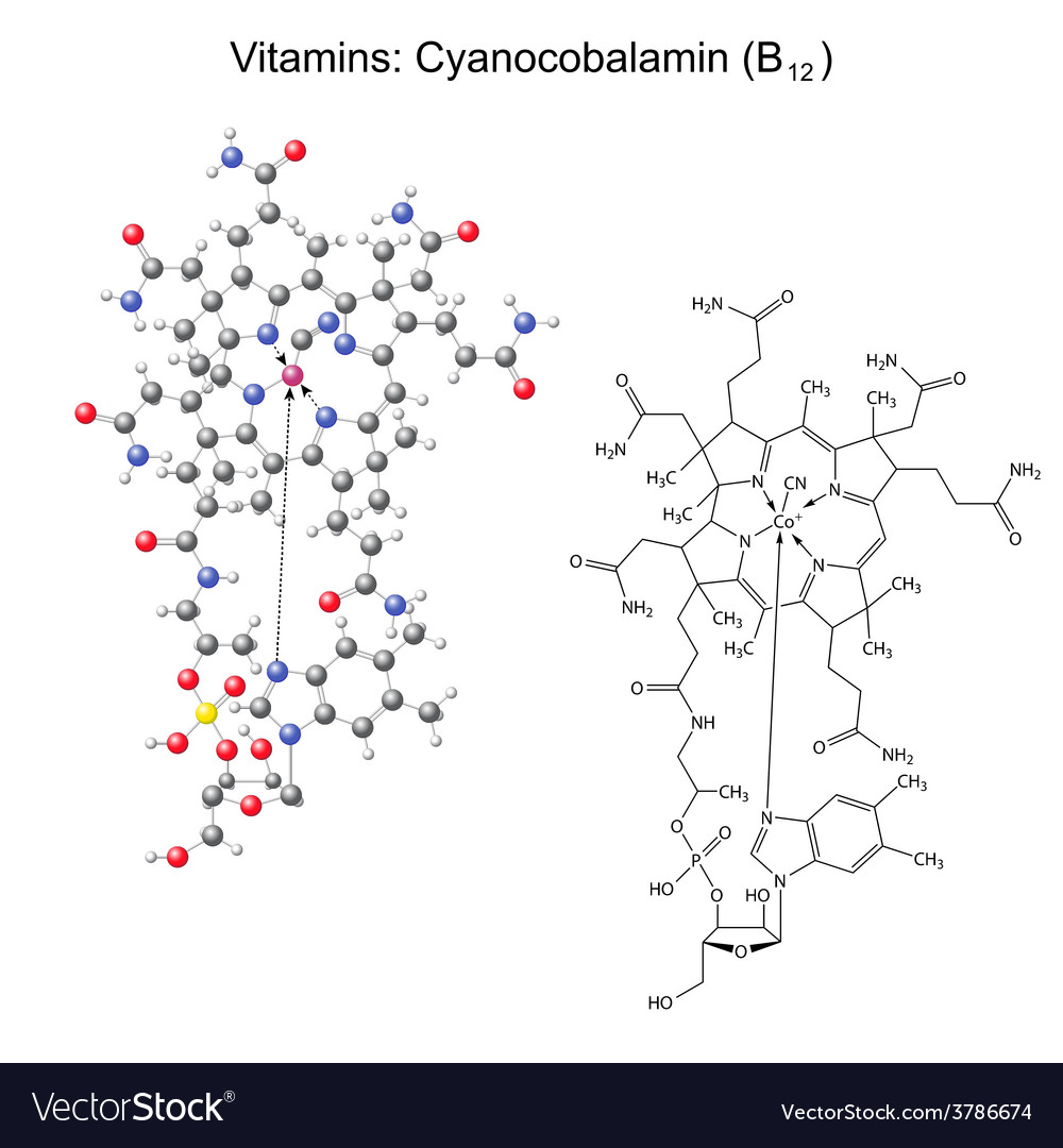 Chemical formula and model of vitamin b12 vector | Price: 1 Credit (USD $1)
