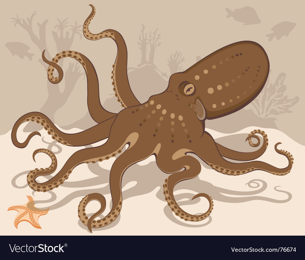 Octopus on coral reef vector | Price: 1 Credit (USD $1)