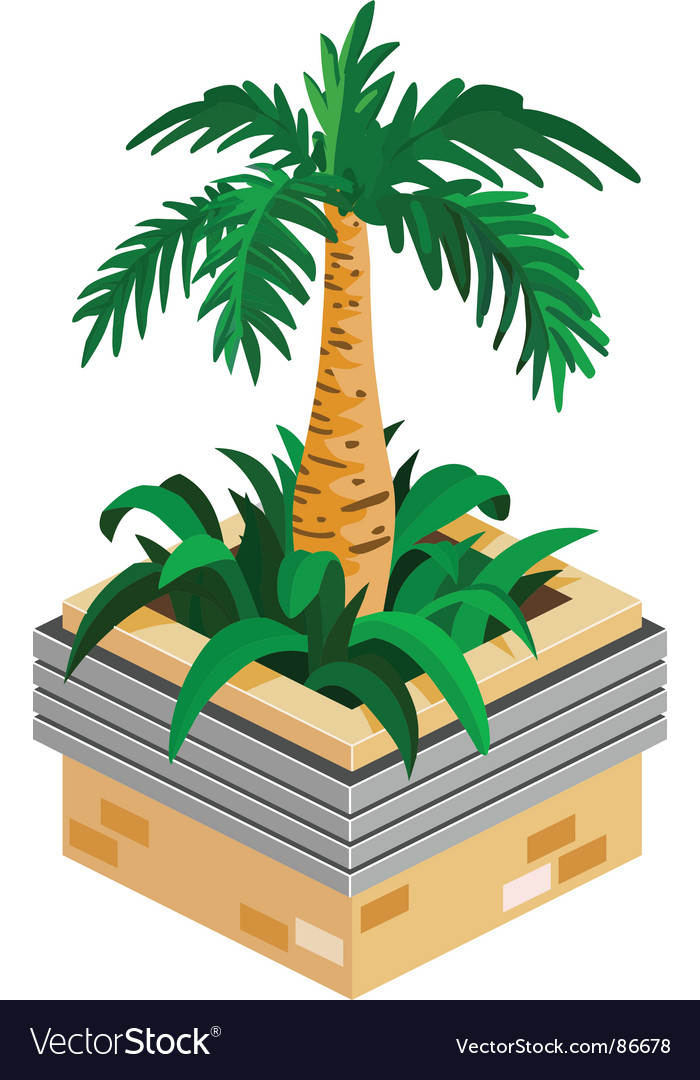 Palm plant vector | Price: 1 Credit (USD $1)