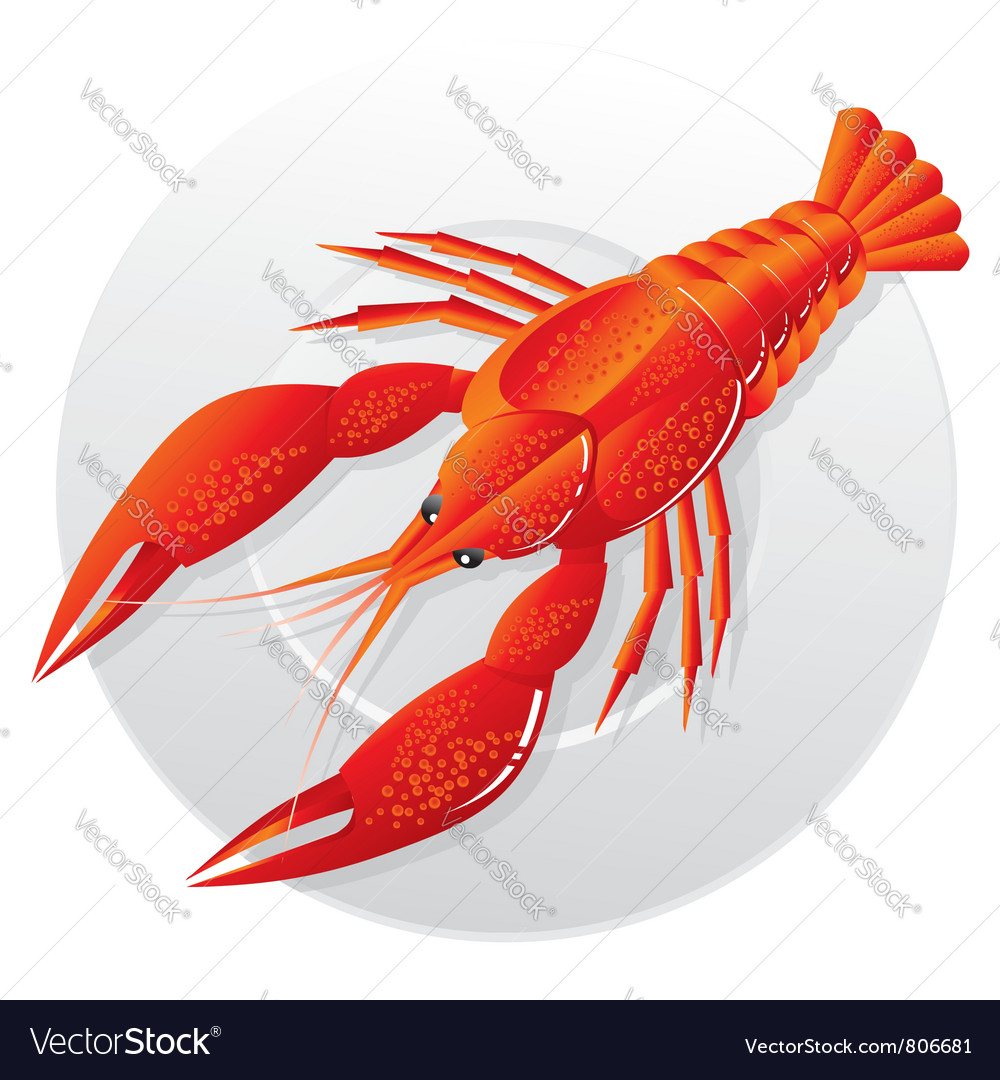 Seafoods vector | Price: 3 Credit (USD $3)