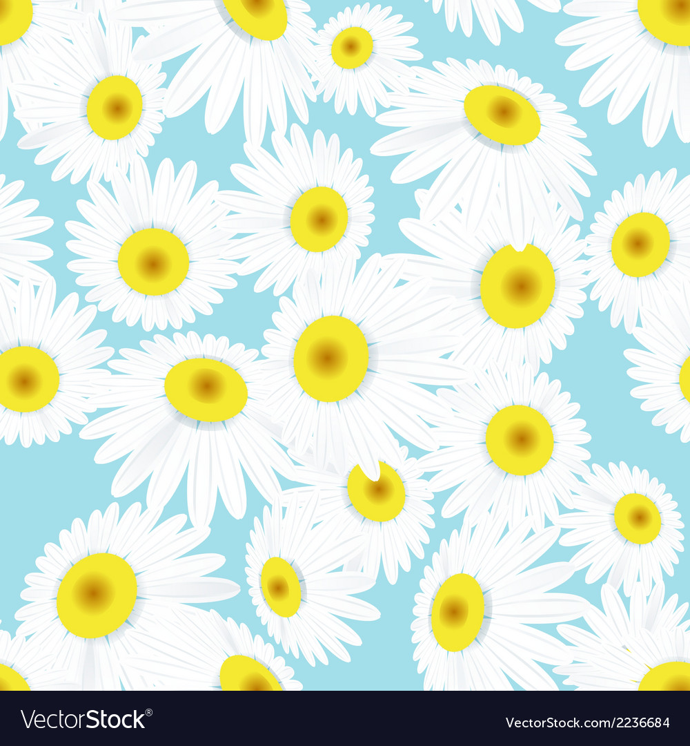 Seamless daisies pattern eps 10 vector | Price: 1 Credit (USD $1)