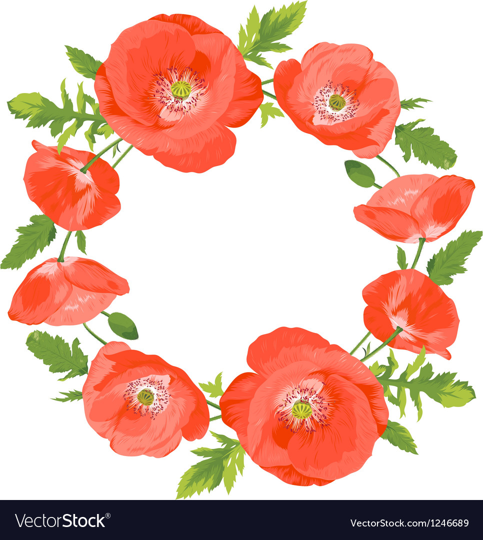 Poppies wreath vector | Price: 1 Credit (USD $1)
