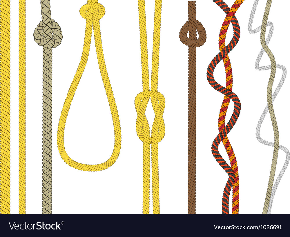 Different size and color rope vector | Price: 1 Credit (USD $1)