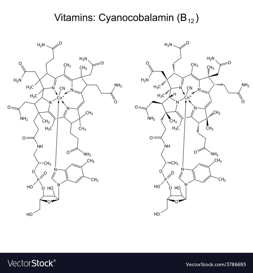 Chemical formula of vitamin b12 vector | Price: 1 Credit (USD $1)
