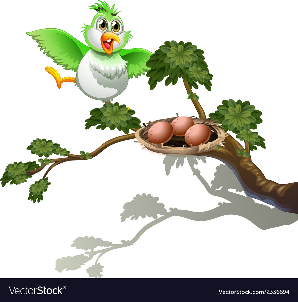 A cute bird at the branch of a tree with a nest vector | Price: 1 Credit (USD $1)