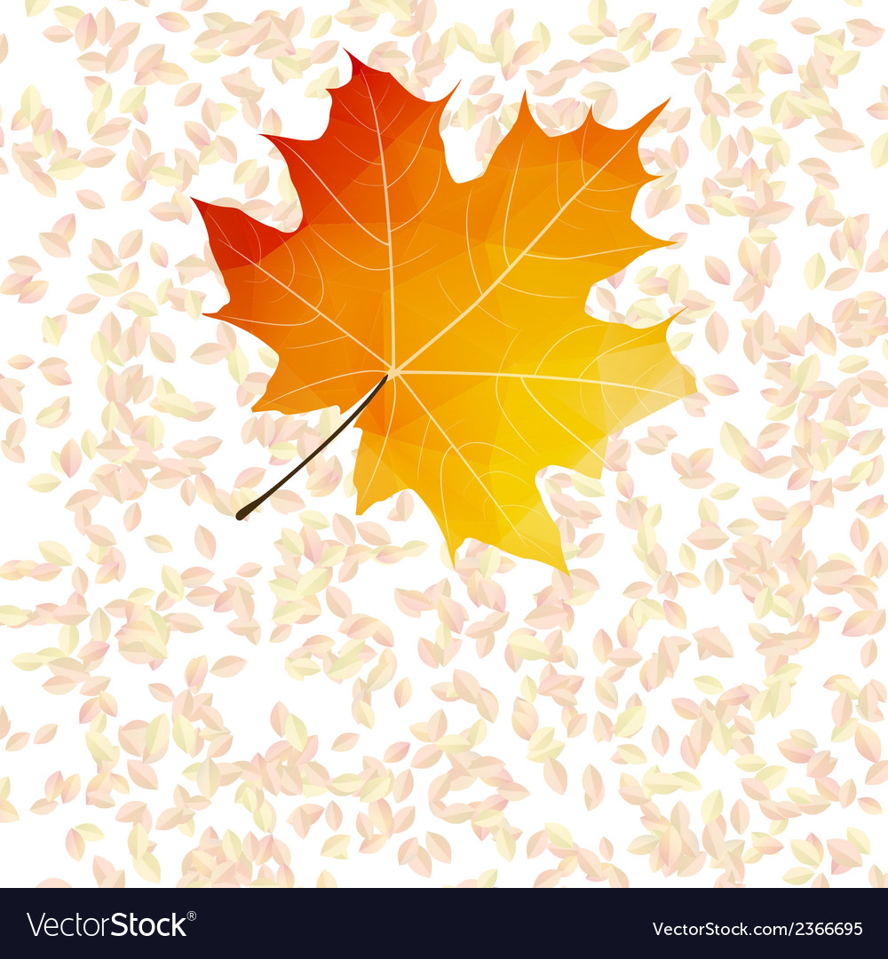 Autumn leaf abstract backgrounds plus eps10 vector | Price: 1 Credit (USD $1)
