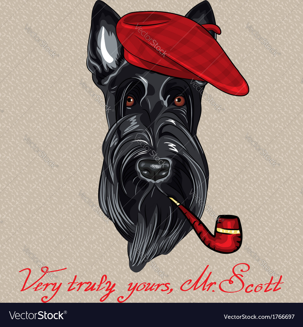 Hipster dog scottish terrier vector | Price: 1 Credit (USD $1)