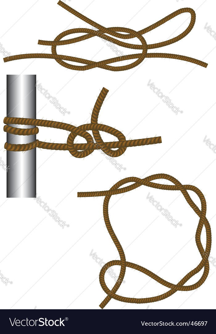 Reef knot vector | Price: 1 Credit (USD $1)