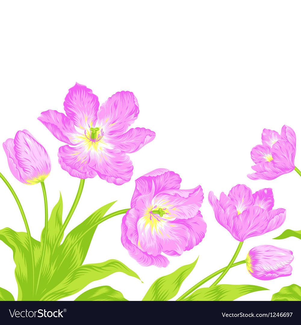 Tulips bouquet seamless border composition vector   Price: 1 Credit (USD $1)