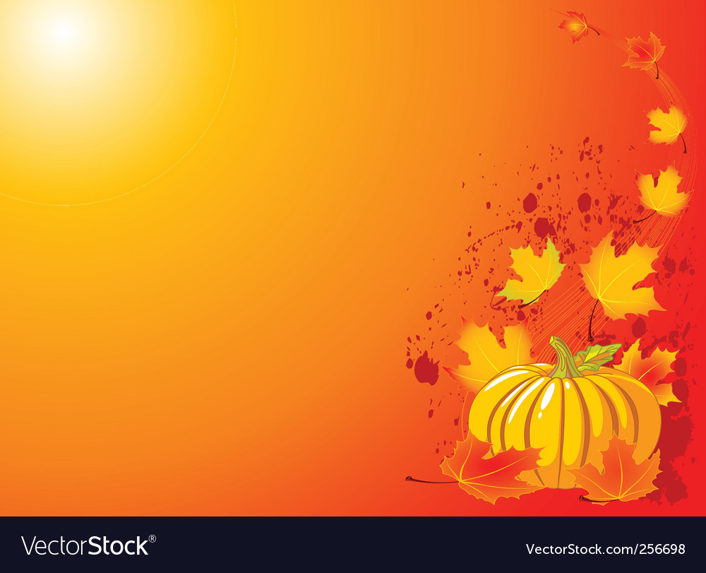 Autumn pumpkin background vector | Price: 1 Credit (USD $1)
