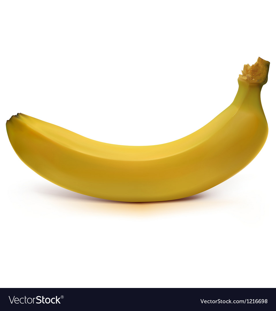 Banana vector | Price: 1 Credit (USD $1)