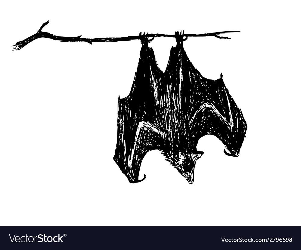 Upside down bat vector | Price: 1 Credit (USD $1)