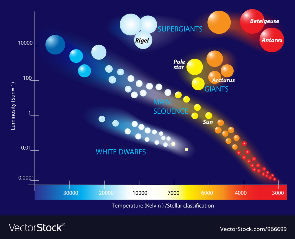 Hertzsprung-russell diagram vector | Price: 1 Credit (USD $1)