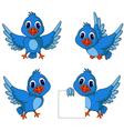 Cute blue bird cartoon collection vector