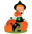Halloween witch with pumpkins vector